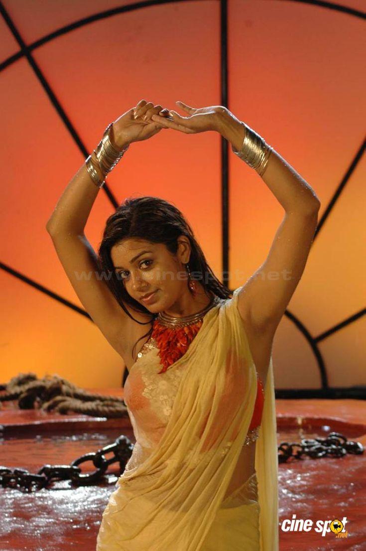 Chaya Singh Hot Stills (3)