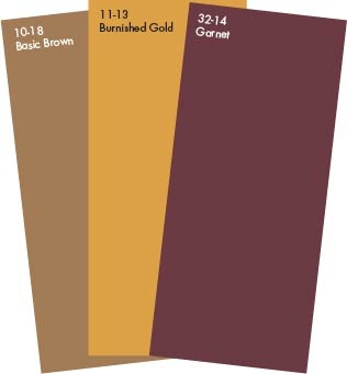 Pratt Lambert October Colors Garnet Burnished Gold Basic Brown August Colorsflorida State Seminoedroom Colorspainting
