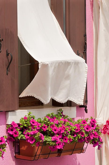 Open shutters, pink walls, bright petunias in window box and a fluttering white cotton curtain makes for a very cheerful window