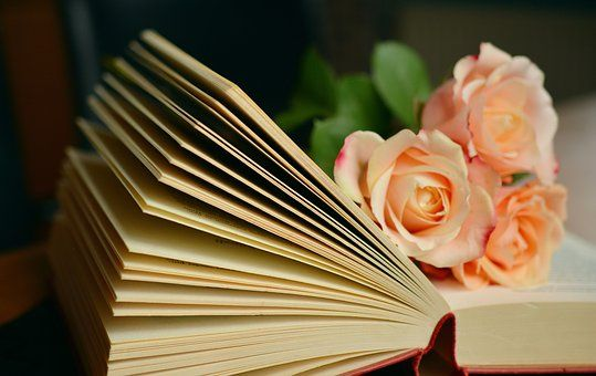 Book, Book Pages, Read, Roses