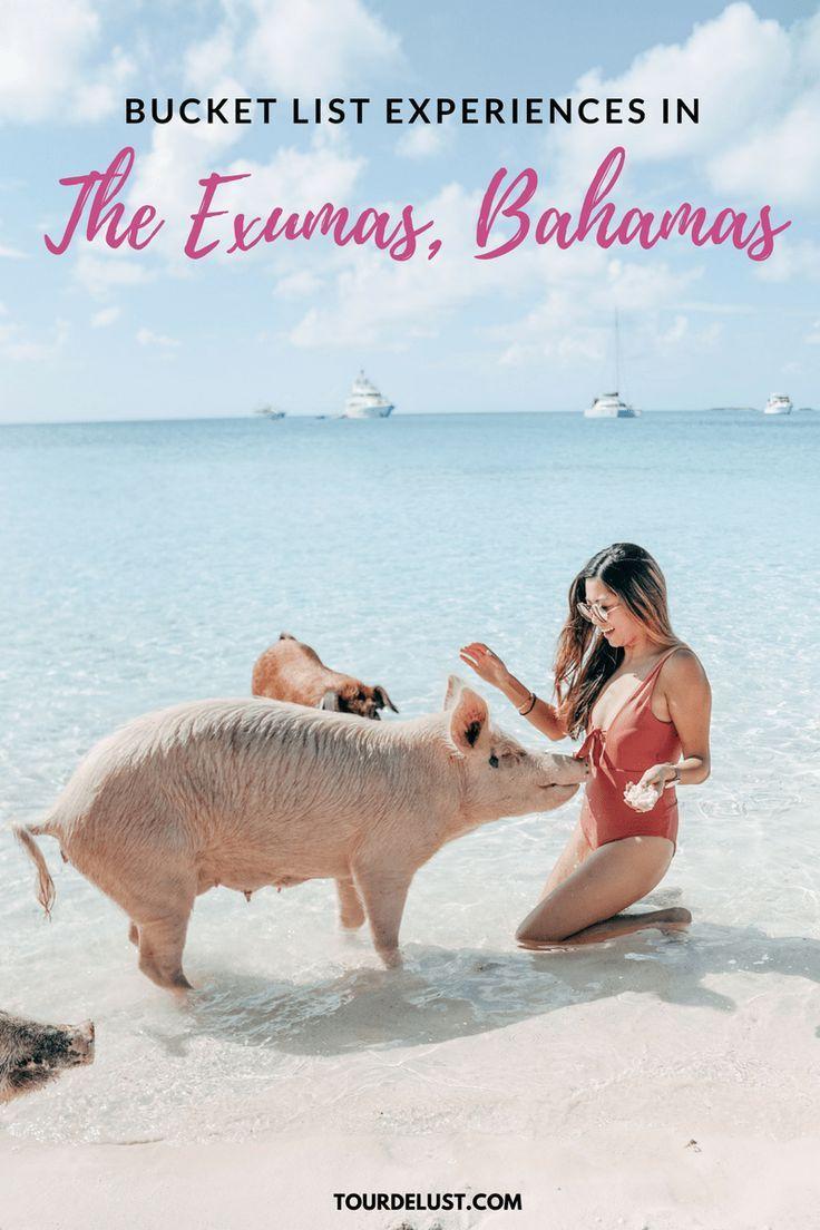 Bucket list experiences in The Exumas, Bahamas