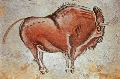 Altamira bison~~Altamira is a cave in Spain that became famous for its colored cave paintings, depicting the wild mammals and the human hands from its vault. It is located near the town of Santillana del Mar in Cantabria, 30 km west of the city of Santander.                                                                                                                                                                                 More
