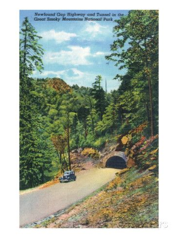 Great Smoky Mts. Nat'l Park, TN - Newfound Gap Highway, View of a Car Exiting a…