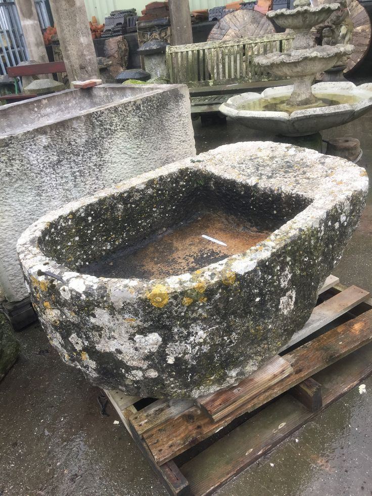 Ancient limestone trough