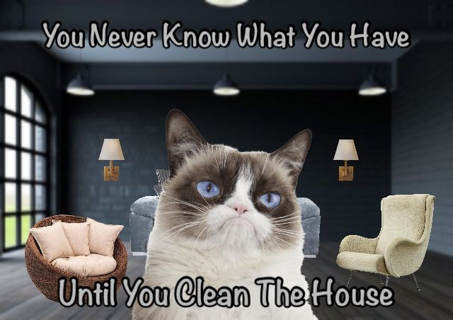 Grumpy Cat Says You Never Know What You Have Until You Clean The House Grumpy Cat Humor Grumpy Cat Grumpy Cat Meme