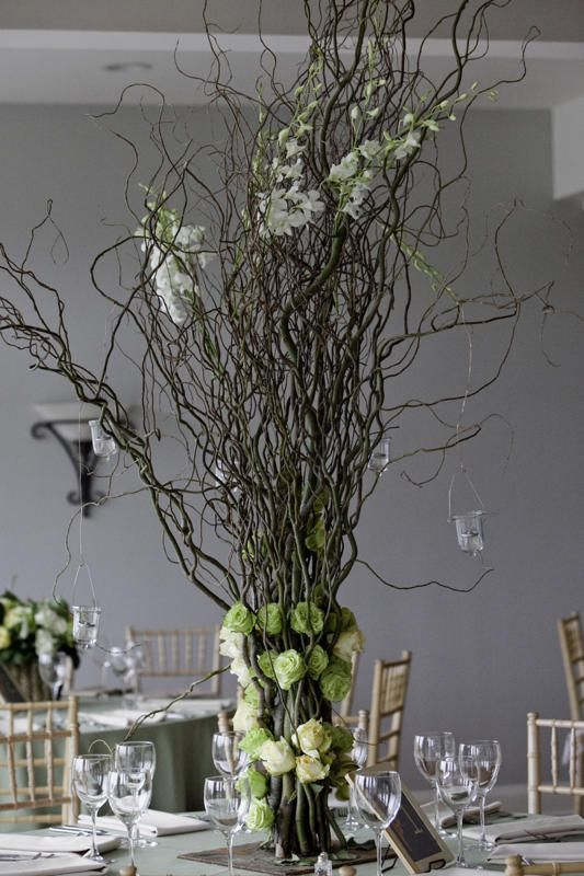 Bulk Curly Willow Branches Wholesale Wedding Supplies Discount Favors Party