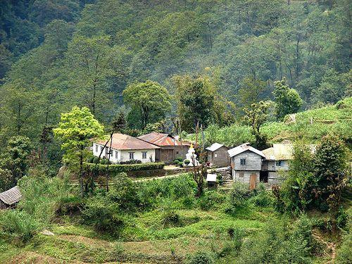 Idyllic Rural Life