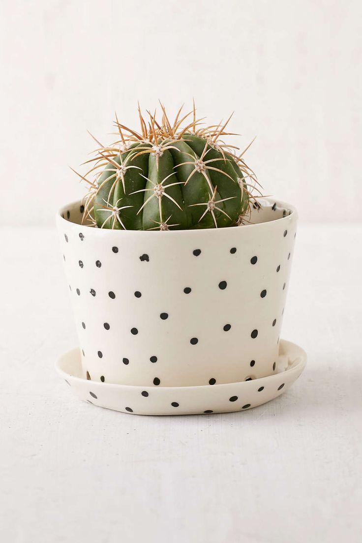 im Punktestyle kommt der Kaktus gleich doppelt gut