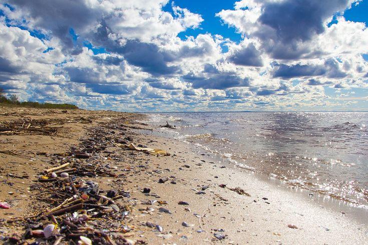 волна прибой мусор: 14 тыс изображений найдено в Яндекс.Картинках