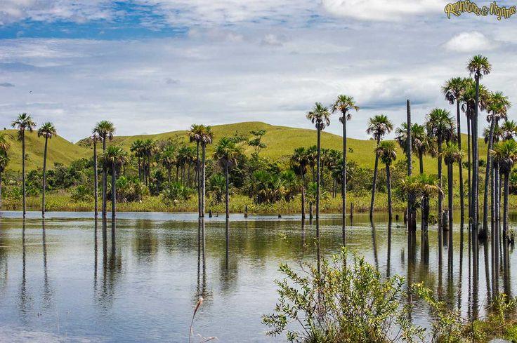 rio meta colombia - Buscar con Google