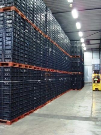 CBL-opslag op IPP-blokpallets conform klantwens bij HB-cRc CBL-depots