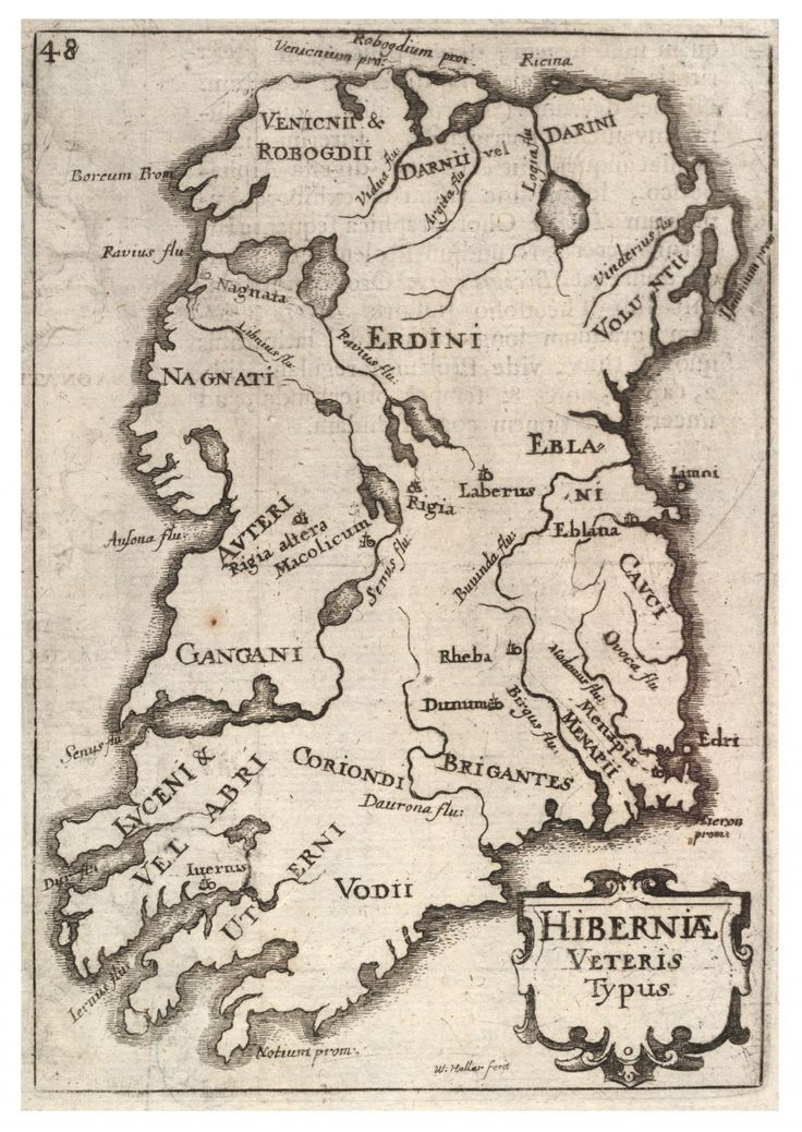 """Celtic:  One of the oldest texts in Ireland is the """"Leabhar Gabhala"""" (""""Book of Invasions""""). It is a semi-mythical account of the peoples who settled in Ireland in prehistorical times. The first to arrive were a small dark race called the Fir Bolg (Men of the Bag or Belly), and the last to fully established itself as rulers were the Milesians---the sons of Mil, a soldier from Spain. Modern DNA research has confirmed that the Irish are close genetic relatives of the people of northern Spain."""