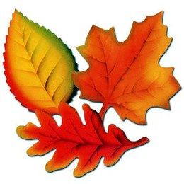Decoratie Herfstblad groot -  Een set met 3 grote herfst bladeren. Afmeting: 30cm. | www.feestartikelen.nl