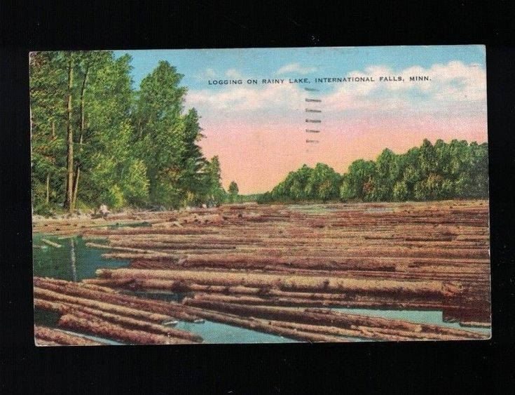 1951 Logging On Rainy Lake International Falls Minnesota Post Card