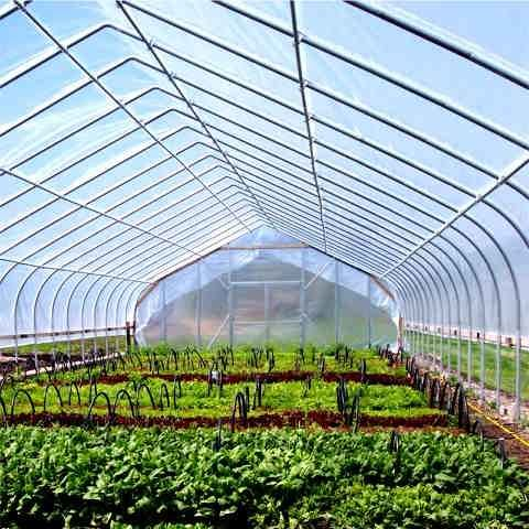 used greenhouses for sale ontario