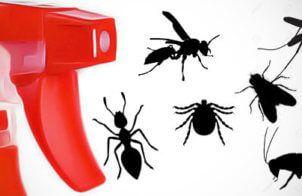 recette naturelle répulsif insecte