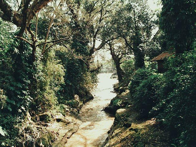 #cikapundung #sungaicikapundung #cikapundungriver #kiruh #hiking #hikingjabar #bandung #jawabarat #indonesia