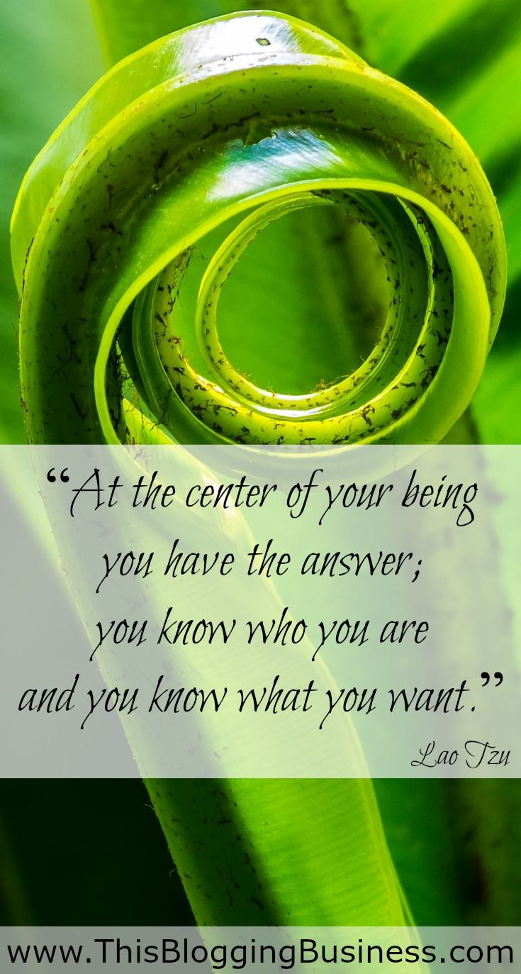 Self Improvement Quotes - At the center of your being you have the answer, you know who you are and you know what you want. Lao Tzu
