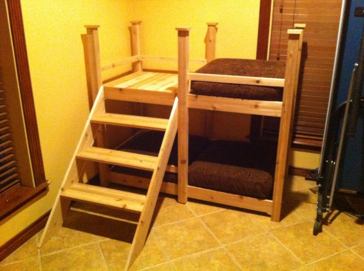 Large Breed Dog Bunk Bed