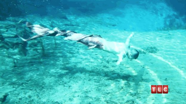 And now for some gratuitous swimming GIFs: | This Guy Is Obsessed With Becoming AMermaid