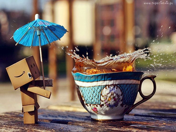 Danbo, Parasolka, Filiżanka, Herbata, Rozmycie