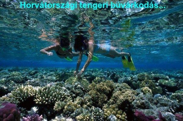 horvátországi tengeri búvárkodás