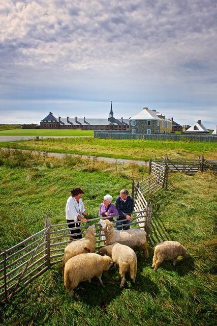 ...and furry characters too! #capebreton #history #animals #louisbourg  http://www.cbisland.com/experiences/culture-and-heritage/historic-sites