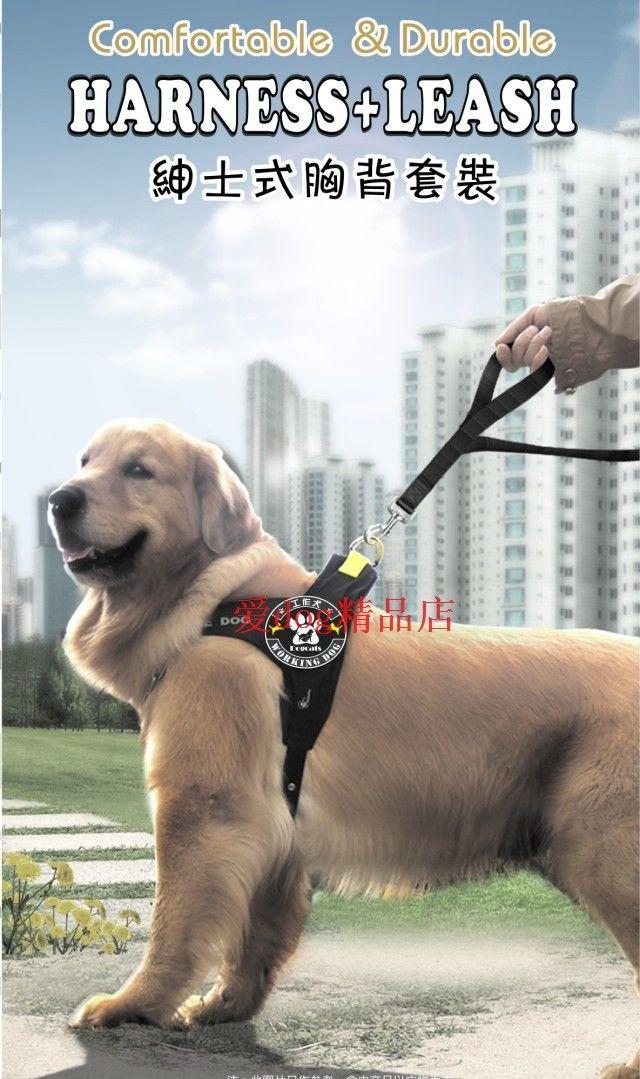 Поводок для собаки приобрести с доставкой из Китая на Tao.ru, интернет-магазине товаров из Китая