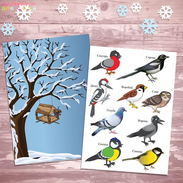 Картинки птицы зимой для детей в детском саду