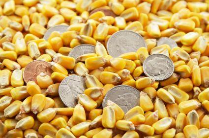 Today's Commodity Market | 24 NOV 2014 | Commodity market live | Market watch #gold #silver #copper #crudeoil #zinc #nickel