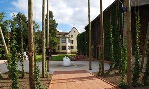 Groupon - Visite de la Villa Meteor d'1h30 avec dégustation de bières pour 2 ou 4 personnes dès 14 €  à Hochfelden. Prix Groupon : 14€