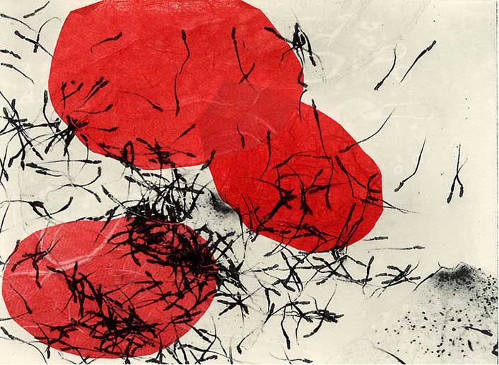nontoxicprint | Nontoxic Printmaking & Printed Art Joan Wiener, Poppies 5, photopolymer intaglio and chine colle