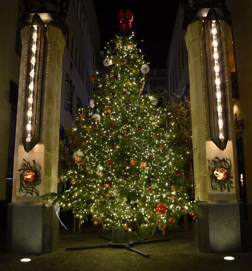Christmas Tree San Antonio: 381 Best Images About Christmas Trees Around The World On