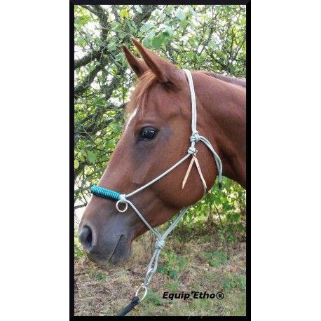 Side pull corde Licol utilisé pour monter à cheval sans mors. Travail artisanal et français.