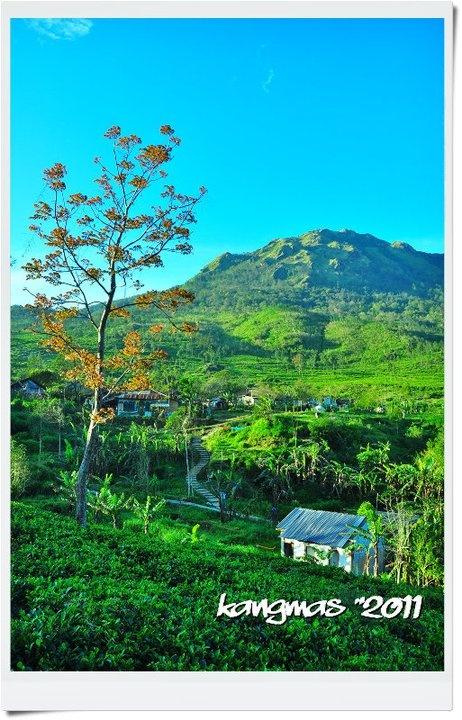Mount Ungaran - Kab. Semarang -