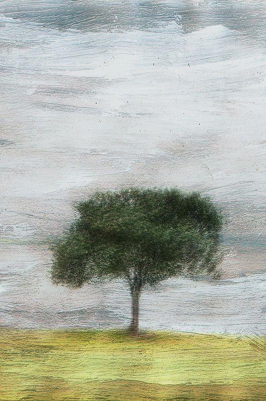 Impressionist style photograph