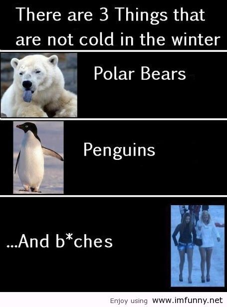 There are three things that are not cold in Winter ... Funny Winter Quotes For Facebook