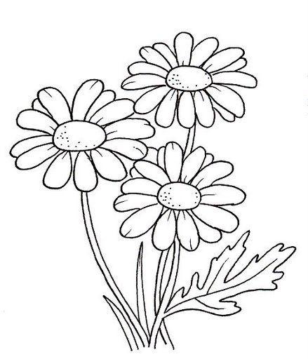 desenhos-para-pintar-pintura-de-desenhos-27.jpg (439×512)