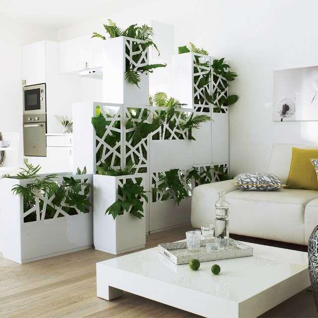 panneau separation vegetal blanc castorama pour s parer deux pi ces plantes pinterest. Black Bedroom Furniture Sets. Home Design Ideas