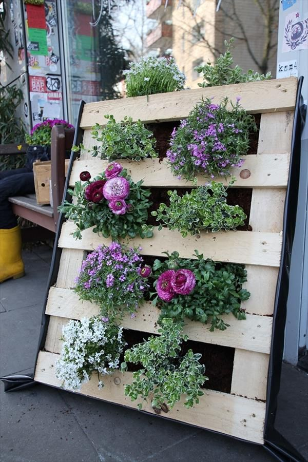 Pallet Ideas for Garden and Balcony Decorations