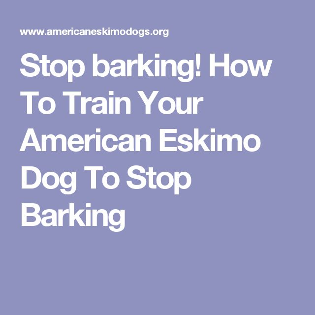 how to train a deaf dog to stop barking