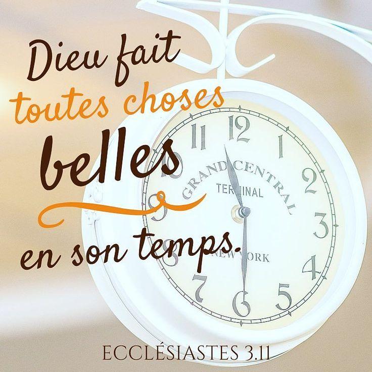 #Dieu fait toutes choses #belles en son #temps. Le #crois-tu? #promesse #patience #foi #versetdujour #bible #labible