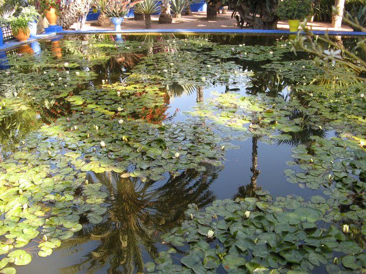Majorelle Gardens Marrakech