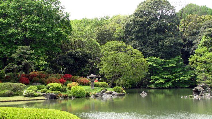 """Самые красивые ботанические сады нашей планеты. """"Бруклинский ботанический сад""""."""