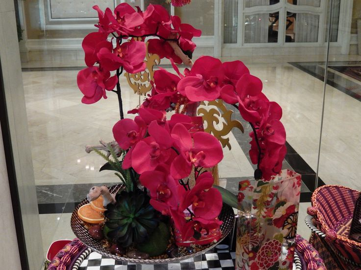 Beautiful Dark Pink Orchid At The Bellagio Hotel And