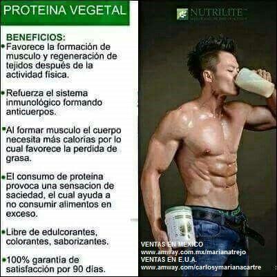 La proteína vegetal nutrilite es la mejor,  sin químicos y de productos naturales y orgánicos.