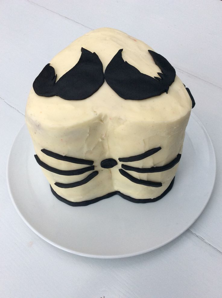 dan and phil birthday cake whiskers phandom lily 13th