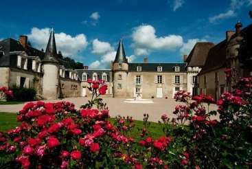 Workaway in France. We would really appreciate help with the maintenance of our 16th century chateau and organic vegetable garden in Crozon sur Vauvre