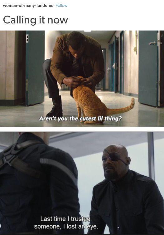 """Der """"Captain Marvel"""" Trailer ist da und Tumblr hat A gemacht"""