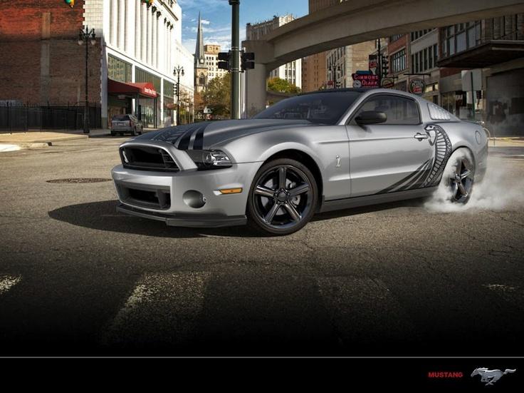 Encinitas Ford - Google+   Meet 'Mean Shelby'.
